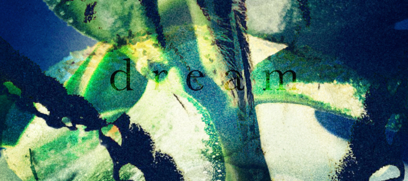 """""""dream"""" by gbmediadesign"""