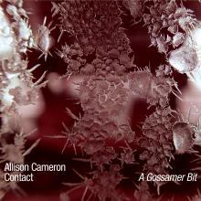 """Allison Cameron and Contact: """"Gossamer Bit (Ives Hymn)"""" from A Gossamer Bit"""
